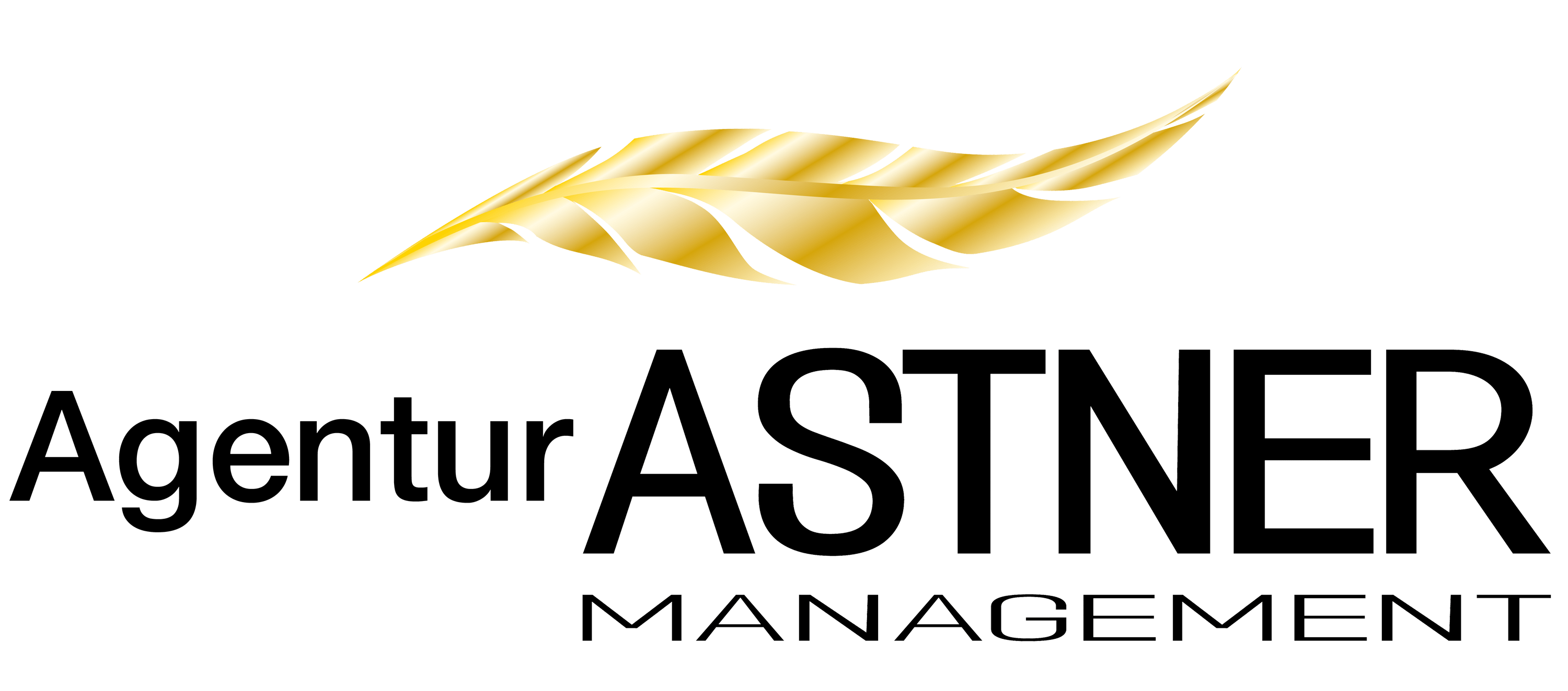 Astner Management Logo